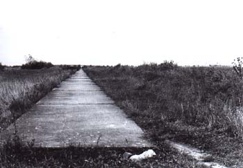 In November 1939, 2.25-metre-wide lay-by lanes were concreted near Čestlice u Prahy. Picture taken in 1960's